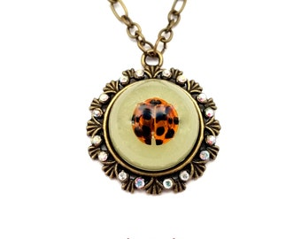 real lady bug glow in the dark oddity necklace