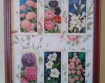 Will's Cigarette Cards Garden Flowers in a Vintage Red Frame,Shabby Chic.