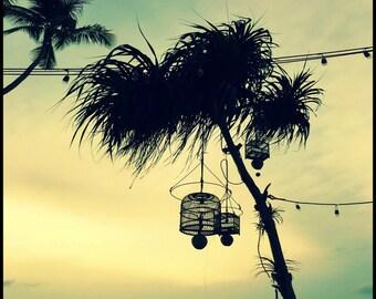 Beach Photography, Coastal Wall Art, Ocean Print, Palm Silhouette, Blue Tone Photo