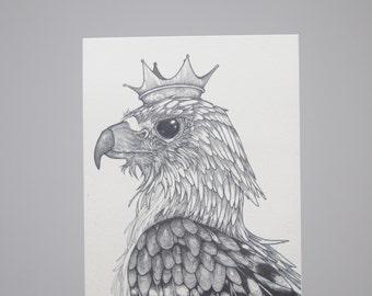 Hawk Postcard, Hawk Illustration, Hawk Crown, Hawk Drawing, Detailed Hawk, Pen and Ink Hawk, Bird of Prey, Bird King, Fantasy Hawk, A6 Print