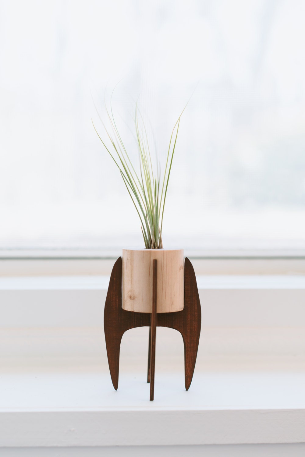 Mid Century Plant Stand Mini Plant Stand Mid Century Air Plant