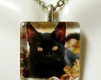 Black cat in the leaves pendant and chain - CGP01-060