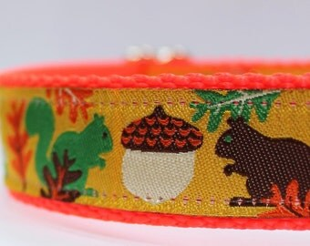 Squirrels Fall Acorns Dog Collar/Adjustable/Fall/Autumn/Nature/Leaves/Pet Collar