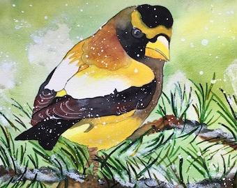 Grosbeak Bird Giclee' Print,  Yellow Bird, Yellow Bird Print, Birds In Art & Collectibles, Yellow Bird Watercolor, Original Bird Painting