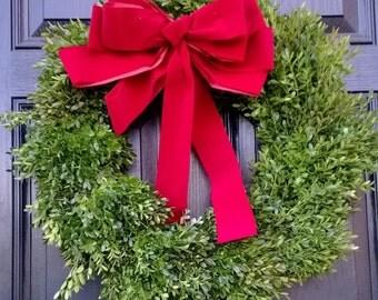"""English Boxwood Wreath, 20"""""""