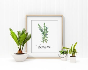 Rosemary Prints, Rosemary Leaf, Herbs Prints, Printable, Kitchen Decor, Botanic Leaves, Home Decor, Kitchen Wall Art, Instant Download