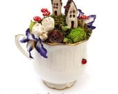 Tea Cup Fairy Garden Tutorial PDF Download