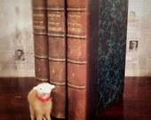 Antique French Book Collection 1908 Histoire Des Girondins Leather Spines w/ Marbled Covers