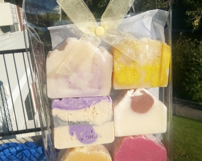 Six pack of soap bars gift bag, valentine, back to school gift, going away to college gift, bar soap, shower soap, gift, teacher gift