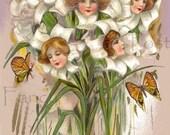 PRETTY Lady  Samuel Schmucker in Flowers, Instant Digital Download, VINTAGE Postcard