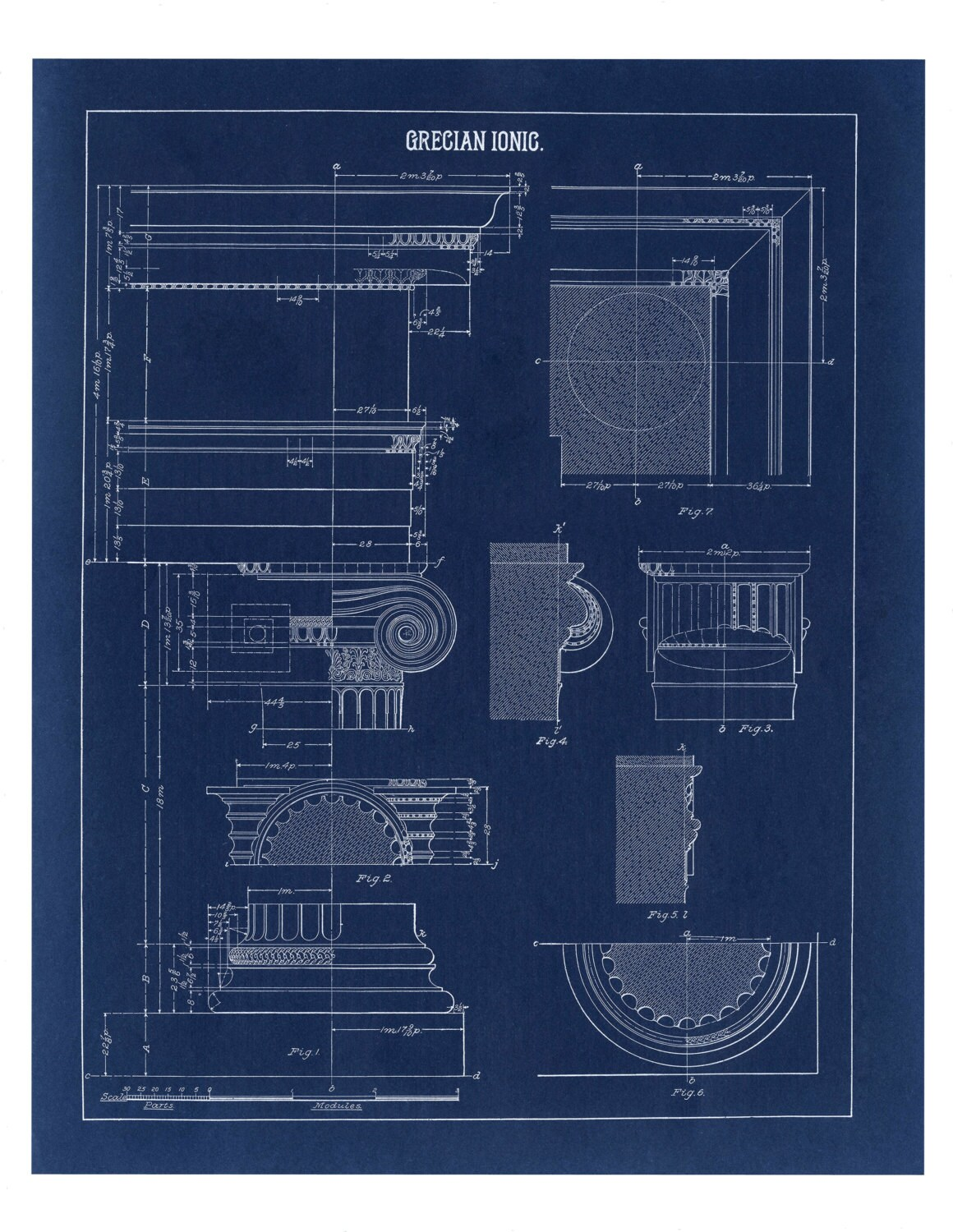 Blueprint wall decor greek ionic column drawing architecture for Architecture blueprint