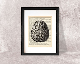 Brain print-brain dictionary print-Anatomy print-brain on book page-anatomical wall art-brain poster-anatomy print set-by NATURA PICTA-DP035
