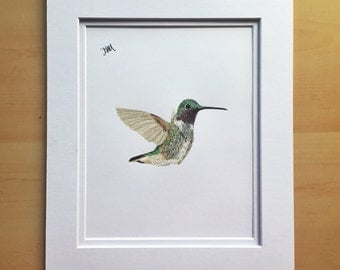 Hummingbird drawing, wall art drawing, original drawing, colored pencil drawing, 11x14 drawing, housewarming gift