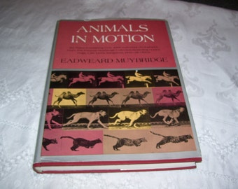 Animals in Motion by Eadweard Muybridge HC DJ  Vintage