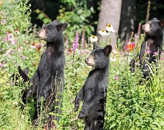 Cubs in the Garden