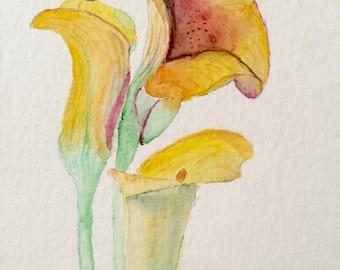 Yellow Calla Lilies Watercolor painting