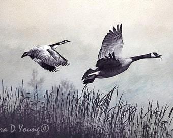Bird Art Print, Canada Geese Print, Geese Flying, Marsh Grasses, Duotone Print, Mist Over Water, Nature Art Print, Fine Art Photography