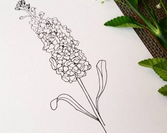 Stalk Flower Line Drawing, reproduction from original ink drawing