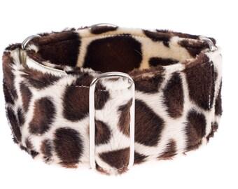 Martingale collar, martingale dog collar, 2 inch, greyhound collar, martingale