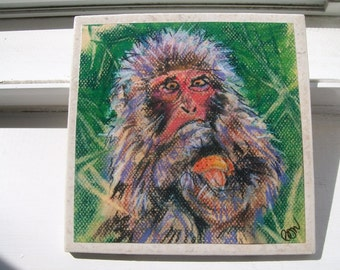Japanese Macaque NoZoo Art Tile