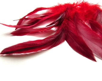10 Burgundy red rooster feathers - Red feathers 4-6 inch - Dark red feathers -  Loose feathers - Real feathers - Earring feather supplies