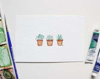 Succulents - 4 x 6 original watercolor
