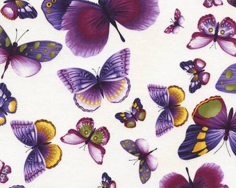Viola Fabric Collection: Ivory Butterflies Fabric by Chong-a Hwang for Timeless Treasures - Listed by the half yard