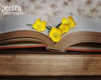 Old Books with Wildflowers Vintage Feel Fine Art Photo Print