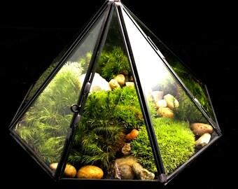 Terrarium/Geometric Diamond Desktop Terrarium/Moss Terrarium/TerraSphere