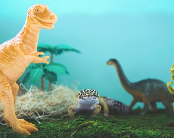 Dinosaur Leopard Gecko 8x10 Fine Art Print