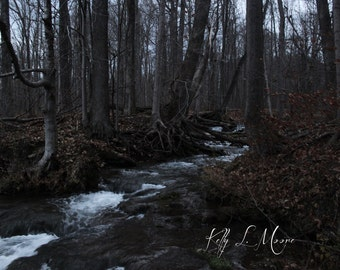 Creek in the Mountains