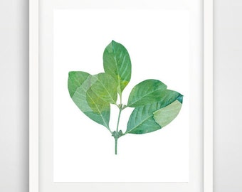 Leaf wall art, plant print, leaf art print, download, botanical print, modern wall art, watercolor art, scandinavian art, home wall decor