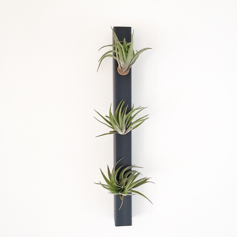 White planter air planters vertical planter minimalist for Air plant planters
