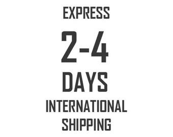Express international shipping  UPS 2-4 days
