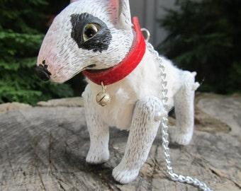 Python.Bull Terrier puppy.