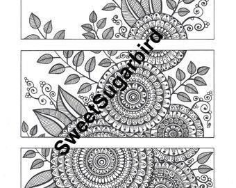 Floral Segments #1