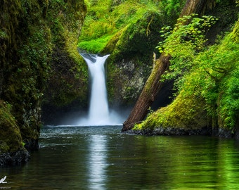 Spring Plunge, punch bowl falls, oregon, wall art, waterfalls, waterfall, gorge, pacific northwest, spring, photography, landscape, nature