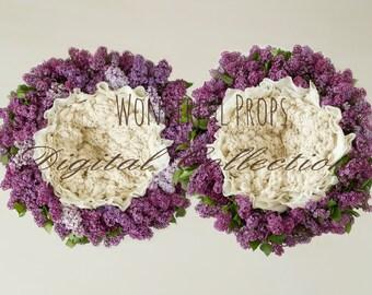 Lilac Nest - SET of 2 Photos - Digital Backdrop - Photo Prop for Newborn Photography