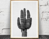 Black and White Cactus Print, Modern Minimal, Western Photography Decor, Mexico, Arizona Desert, Cacti, Printable Photo Instant Download