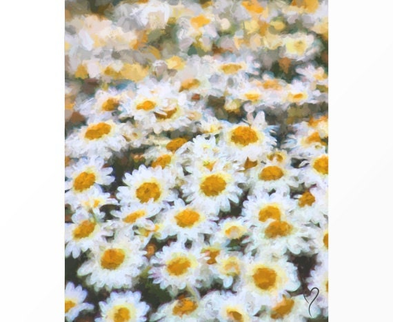 """Daisy Picture by Artist D.Hillman, Field of Daisies, Fine Art Print, Country Decor, Floral Art, Impressionism, Wall Decor """"Monet's Daisies"""""""