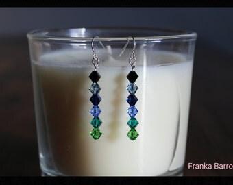 Multi blue color earrings