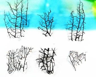 Marimo Terrarium Accessories/Aquarium Decorations-Died Black Sea Tree,Real Dried Sea Fans for Marimo Terrariums