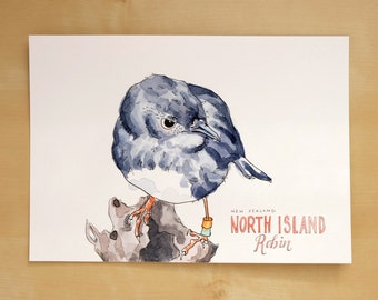 New Zealand Robin // Original watercolor painting // bird wall art // home decor // bird illustration // bird lover gift // wildlife art