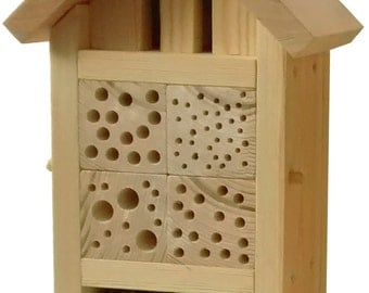 Large Bee and Bug House