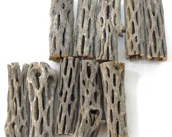 3 Inch Cholla Wood Sticks - 10 Pieces