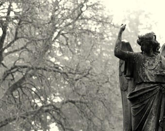 Defiant Angel