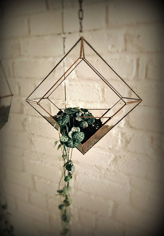Terrarium suspendu à facettes en verre. Géométrique.