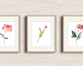 Tulips and Roses - Watercolor Art Print - Set of 3 - Nursery project - Girl Bedroom