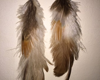 Brown and White Feather Earrings