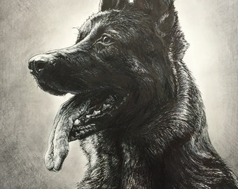 German shepard portrait done in pen and ink with graphite . 16x20 drawing matted and framed. One of a kind original drawing